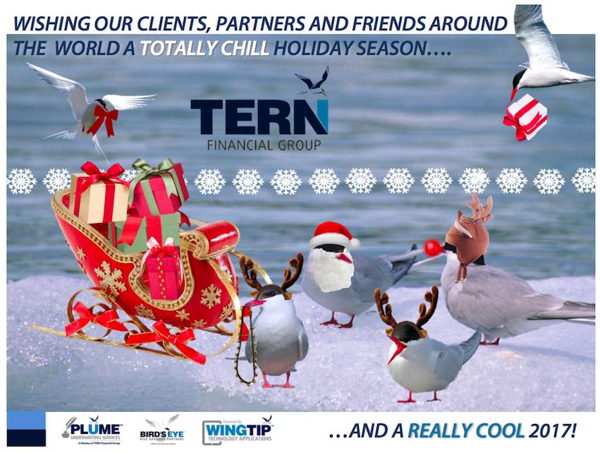TERN-Holiday-Greeting-2016