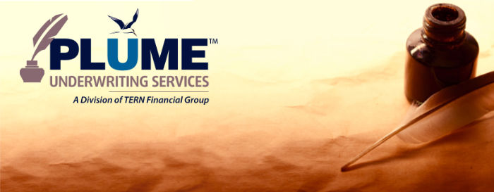 PLUME UNDERWRITING SERVICES